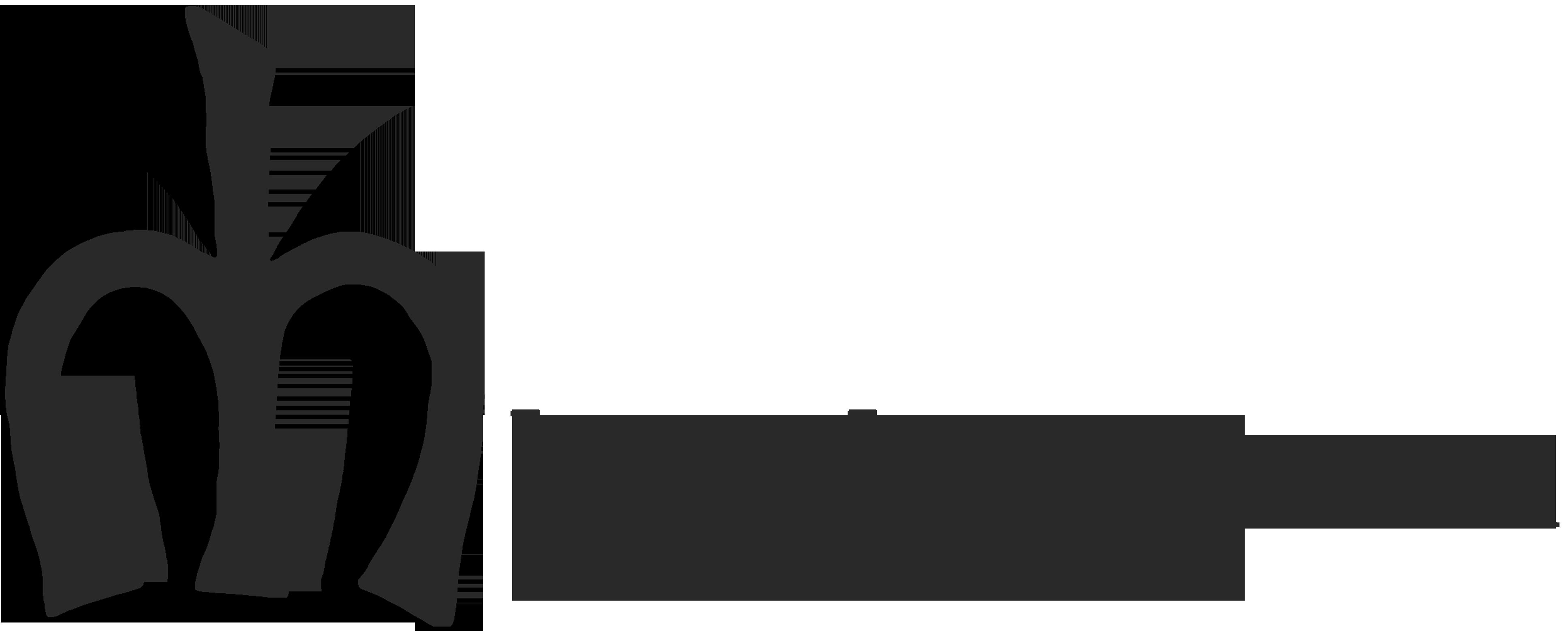 Logo.ch_Georgia_grau